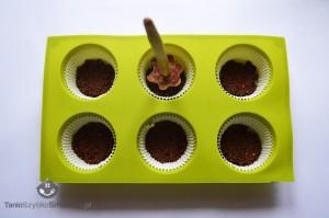 Serniczki-muffinki z galaretką marchewkową_04a