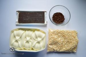 Tort lodowy_01a